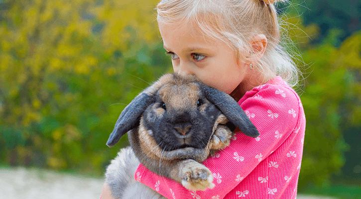 Exotic & Pocket Pet Care